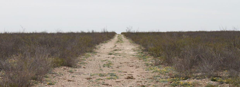 Pecos County, TX