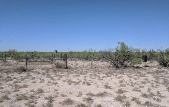 SOLD: 160 Acre Camp near Imperial, TX🏕️ 📹