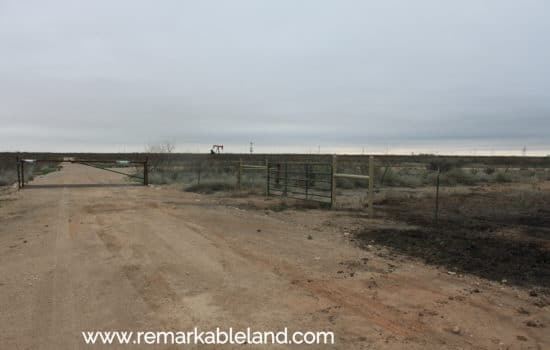 SOLD: 5 Acre Island 🏝️ on the Pecos River