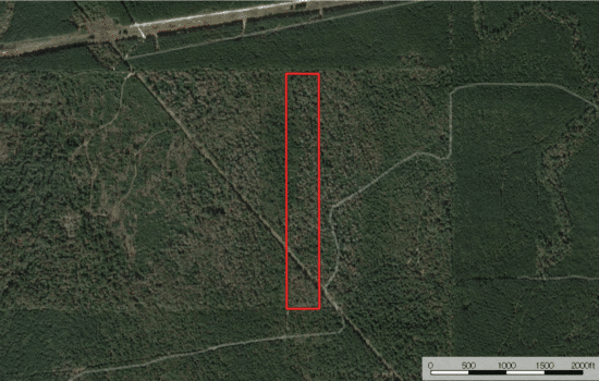 SOLD: 22.84 Acres for Your Cabin in the Piney Woods
