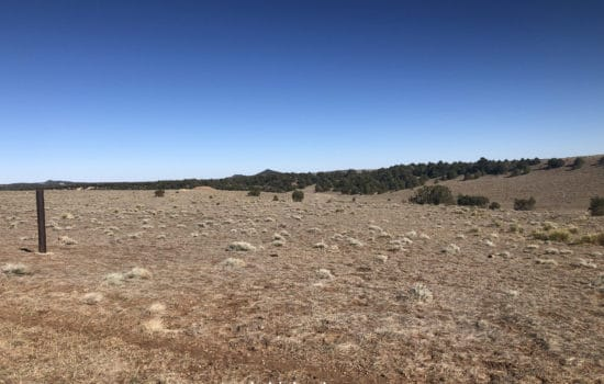 Own the Best Views in the County on This 40.15 Acre Lot